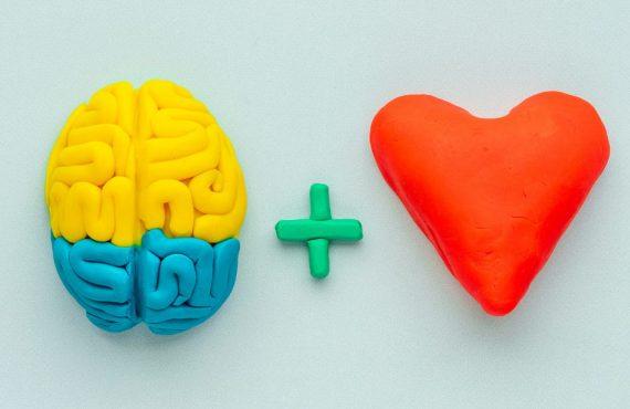 Zdrav um, zdravije srce?